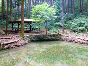 雨乞いの池
