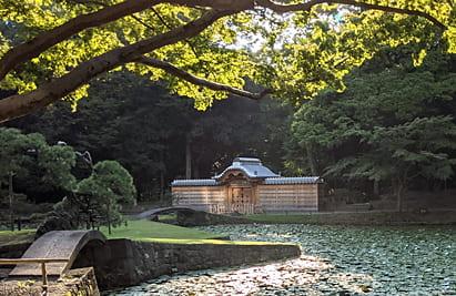 小石川後楽園 3