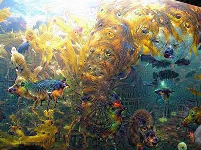 水族館を夢見る