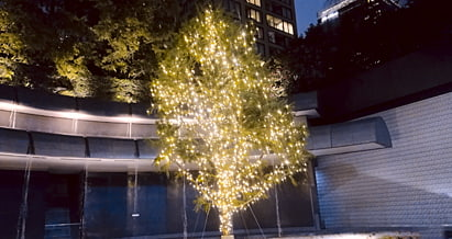 サントリーホールのツリー
