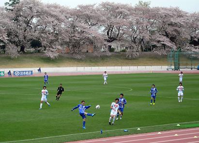 横河武蔵野FC